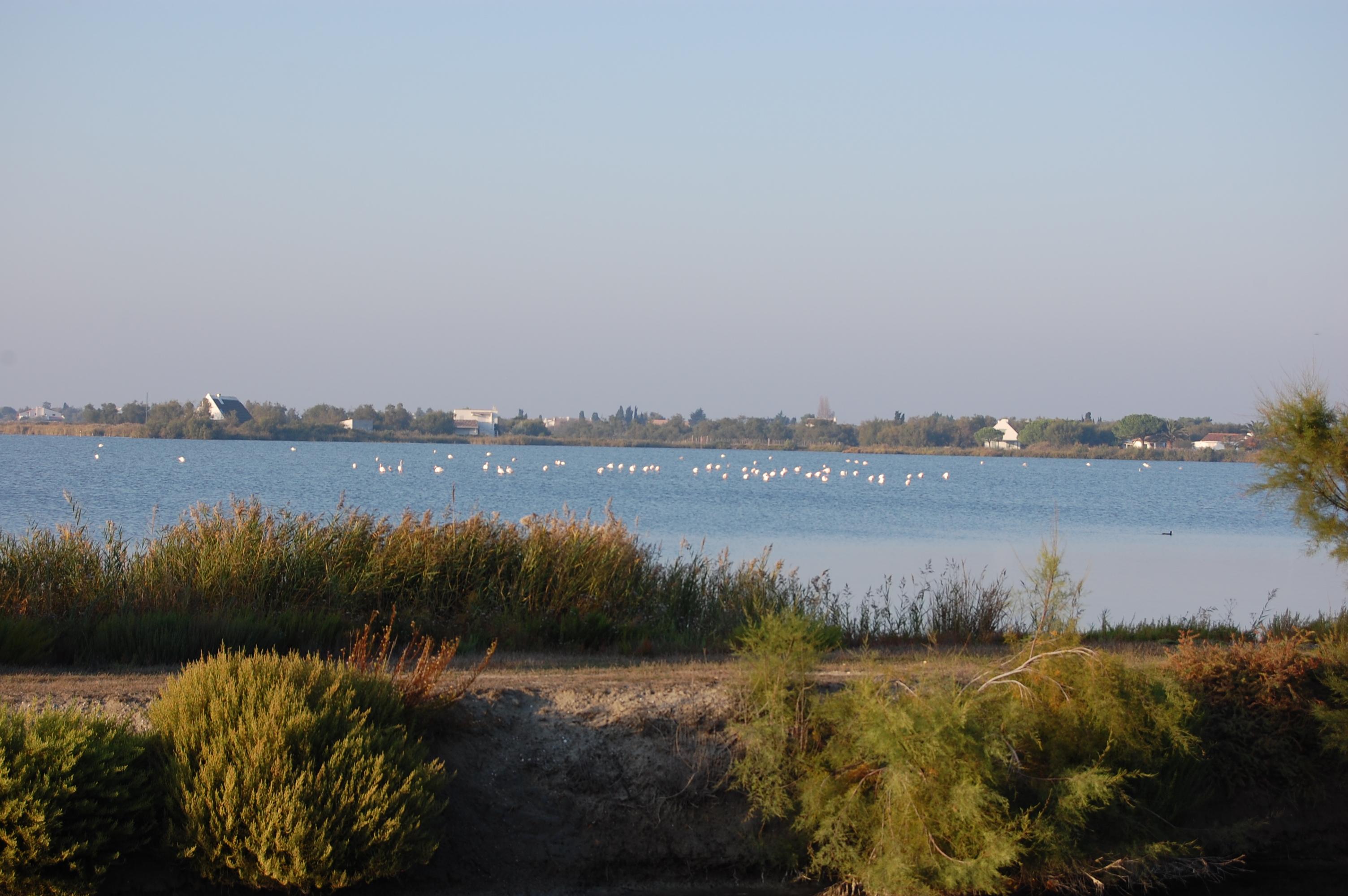 Arles&Saintes Maries de la Mer 243
